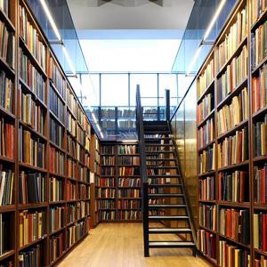 Библиотеки Монастырщины
